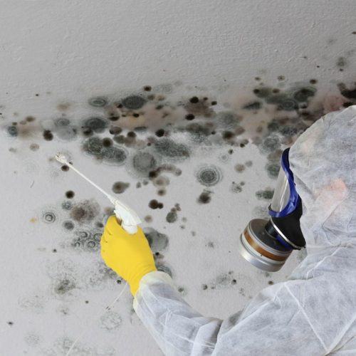 Mold Poisoning: A Risk Of Water Damage Remedial Poorly Done